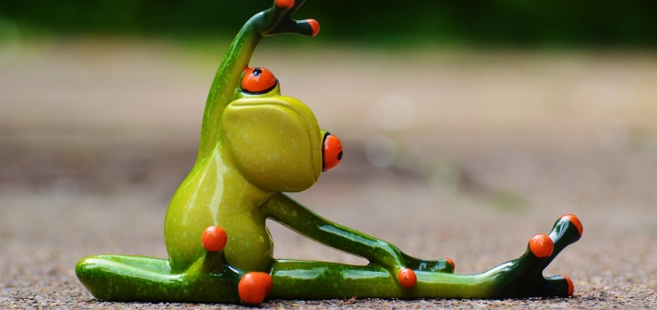 There's nothing about frogs in this article - we just liked the picture. Photo credit: Alexandra